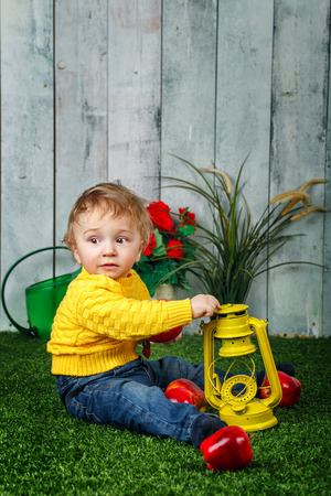 oillamp: Little boy sits on a lawn in the backyard and at his feet lay ripe apples