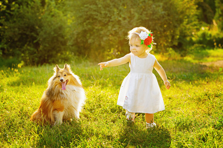 Little girl and dog breed sheltie playing outdoors on a sunny day Stock Photo