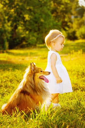 Little girl and dog breed sheltie playing outdoors on a sunny day photo