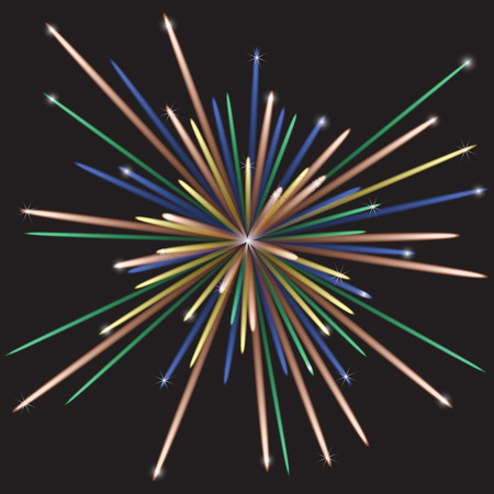 Multicolored vector fireworks with stars and patches of light against the dark night sky Vector
