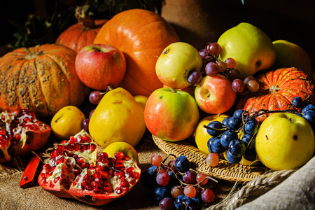 Still life harvest festival of fresh and ripe fruits and vegetables: pumpkin, apples, pears, grapes and pomegranates Standard-Bild