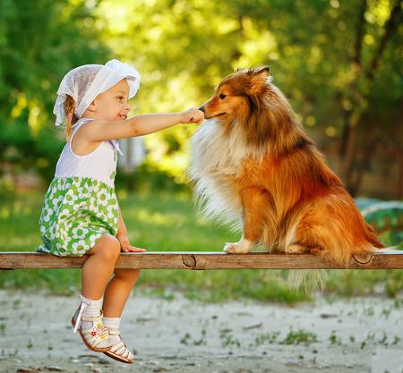 Little girl stroking dog sheltie nose, sitting on the bench. Friendship between man and animals. Foto de archivo
