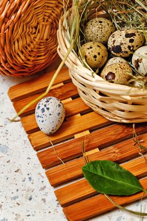 huevos de codorniz: huevos de codorniz en la cesta. Pascua de Resurrección. Foto de archivo