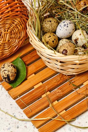 huevos de codorniz: huevos de codorniz en la cesta. Pascua de Resurrección. Dieta. Proteína. Delicadeza. Foto de archivo