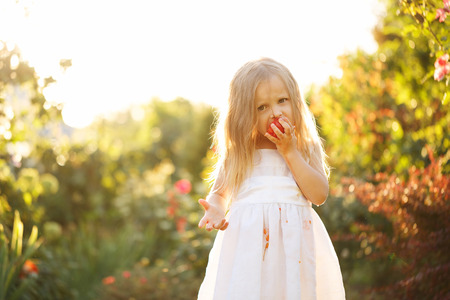 piddle: Cute little girl eating a tomato. Girl soiled white dress in tomato juice. Sunset illuminates the flowing hair. Stock Photo