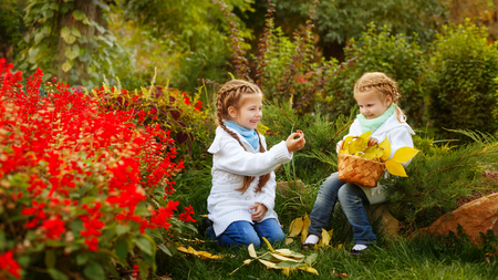 Two cute sisters collect fallen leaves in a wicker basket. Girl gives the mushroom sister. Autumn mood. Family time.