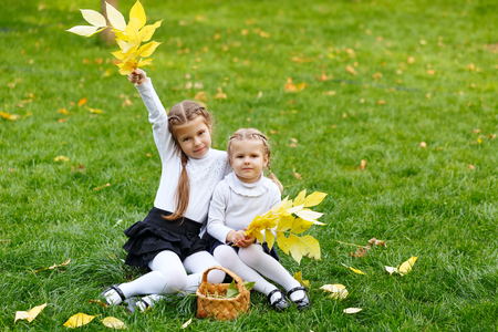 Two cute sisters with wicker basket and leaf litter on the walk in autumn park. The last warm autumn days. Stock Photo