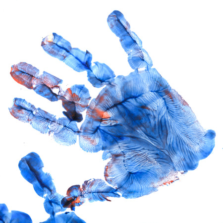Red and blue imprint of childrens hands gouache. Imposition of prints on each other. Finger paint. Childrens creativity.
