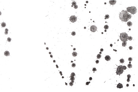 fineart: Abstract black ink splash. Ink blots. Design elements. Water-soluble mascara on a white sheet of paper. Abstract art.