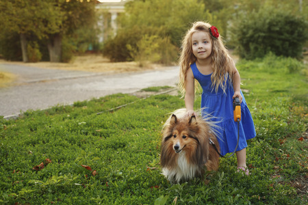 Cute little girl with a dog Sheltie breed. Best friends forever. Dog devotion.