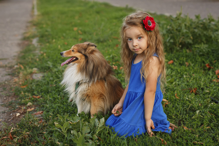 Cute little girl with a dog Sheltie breed. Best friends forever. Dog devotion. A girl and a pet in the park. She is next to the doggy