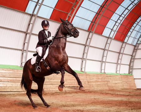 A sweet girl jockey rides a horse in a covered arena. Training candles, stand on hind legs. A pedigree horse for equestrian sport. Stock Photo