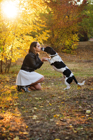 Sweet young girl and dog walking in autumn park. Dog is spotted, hunting, fold and short-legged. Girl in white dress and black leather jacket. She kisses pet in nose