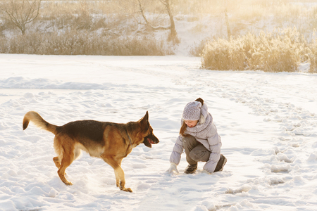 Cute girl and German shepherd for a walk. Sunny winter day. Girl playing with pet Stock Photo