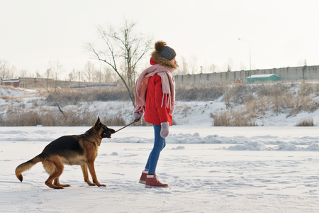 Teenager girl and German shepherd for a walk. Sunny winter day. Girl playing with a pet
