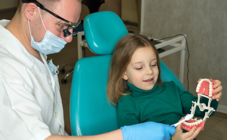 Dentist explains rules of brushing the teeth of little girl holding toothbrush. Girl holding mock jaw. Lesson of oral hygiene. Dentist in mask and goggles.