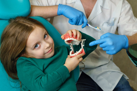 Dentist explains rules of little girl brushing teeth, holding toothbrush and model of jaw. Girl fooling around. Lesson of oral hygiene.