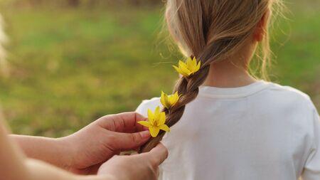Fürsorgliche mütterliche Hände flechten das Haar des kleinen Mädchens. Mama schmückt ihr Haar, indem sie lebendige gelbe Waldblumen in einen Zopf flechtet. Glückliche Mutterschaft. Kinderbetreuung Standard-Bild