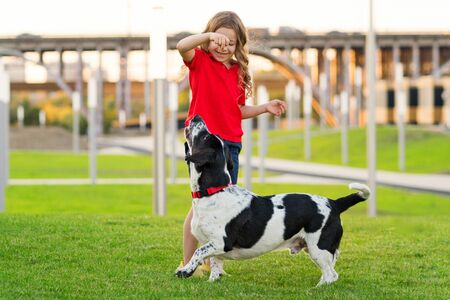 Lovely young girl in red t-shirt with a hunting dog the walk in the green grass on a sunny lawn. Child is training a dog. Obedience training. Children and animals. Faithful friends of human. Imagens
