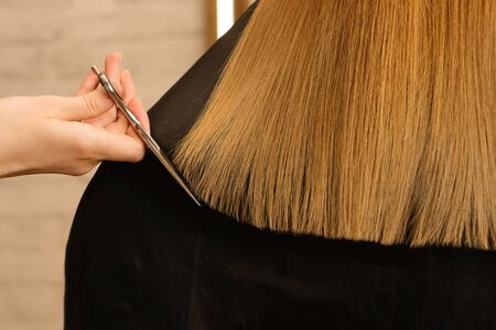 Young customer with long demaged hair in hairdressing salon. Hair care problems. Hairstylist doing haircut with professional hairdresser scissors cutting hair ends. Hairdresser service. Close up. Zdjęcie Seryjne