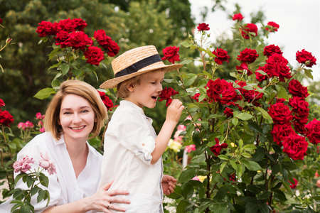 Mothers day. Young woman hugging little boy in rose garden. Beautiful and happy family. Lifestyle portrait of mom and son. Family time together