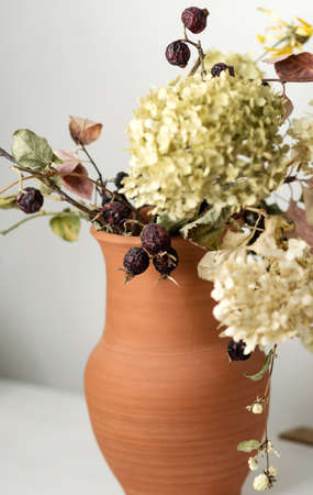 Dried flowers and berries in clay jug on white background close up. Educational still life for drawing.