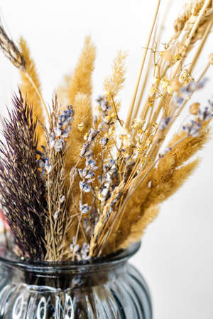 Minimalist composition of dried flowers in vase as home decoration. Beige dried flowers boho bouquet. Common bulrush and yellow field flowers on white background. Educational still life for drawing. 免版税图像