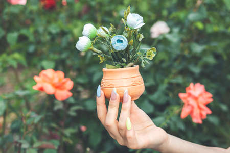 Female hands hold decorative potted flowers on green background Stock fotó