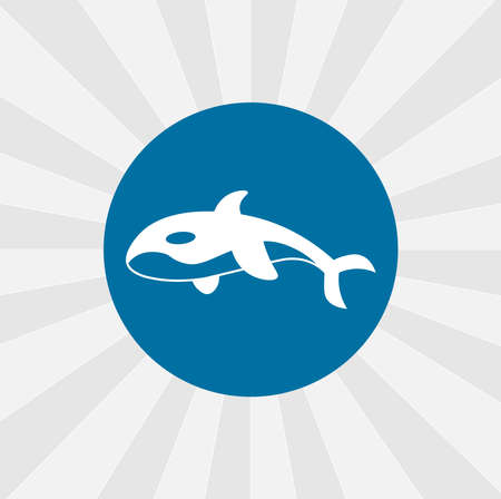 Orca killer whale isolated vector icon. sea animal design element
