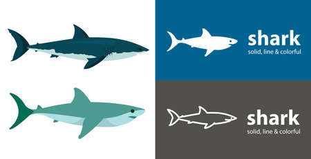 shark isolated vector icon. sea line solid flat icon