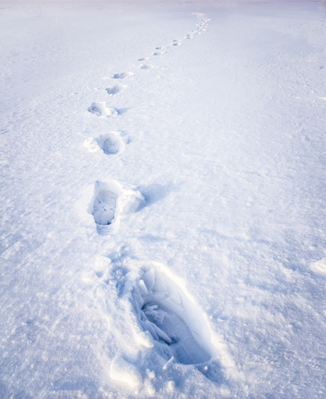 deutschemarks: Footsteps on the snow made by human
