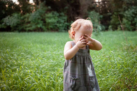 A child in the woods against a backdrop of trees and grass. A one-year-old girl is studying nature. Sunny sunset, a child in a gray dress in a meadow. The child cries loudly, screams, tantrums.