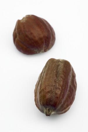 chinensis: Jojoba seeds  Simmondsia chinensis  on withe beckground Stock Photo