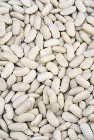 leguminosas: fondo de los granos blancos