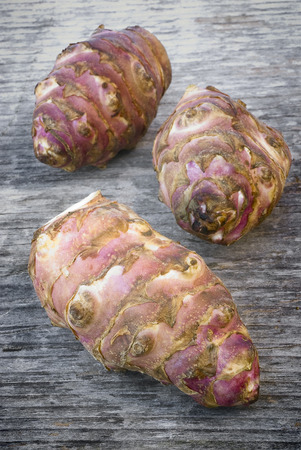 similar: Topinambur root  also known as Jerusalem artichoke (Helianthus tuberosus). Edible rhizome native to North America with a taste similar to the artichoke.