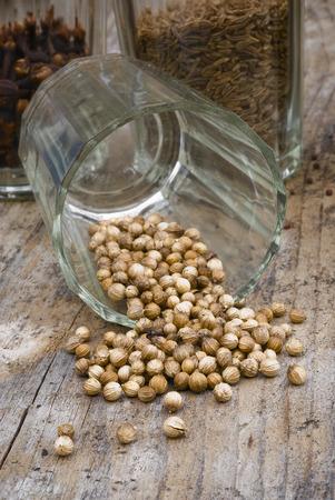coriandrum sativum: coriander seeds (Coriandrum sativum) in glass container. Stock Photo