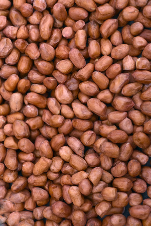 Shelled peanuts (Arachis hypogaea), legumes used for human consumption and animal feed. Stock Photo