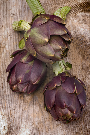 cardunculus scolymus: Artichoke (Cynara cardunculus) on wooden table
