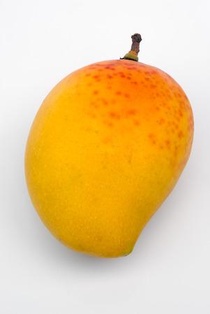 Alphonso Mango, the king of mangoes (Mangifera indica) Stock fotó - 30313765