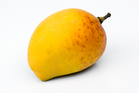 Alphonso Mango, the king of mangoes (Mangifera indica) Stock fotó - 30313792