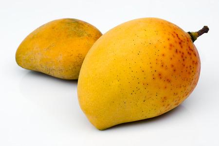 mango: Alphonso Mango, król mango (Mangifera indica) Zdjęcie Seryjne
