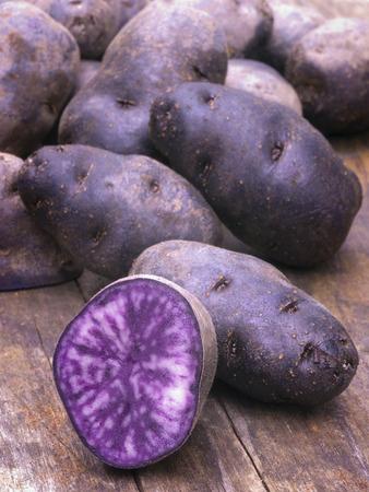Vitelotte blue-violet potatoes Archivio Fotografico