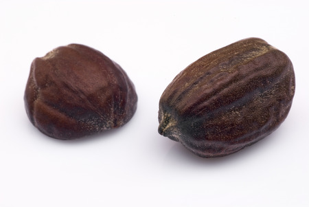 chinensis: Jojoba seeds (Simmondsia chinensis) on white background Stock Photo