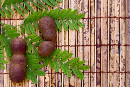 tamarindo: Tamarindo (Tamarindus indica) vainas y hojas para el título Foto de archivo