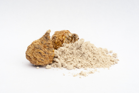maca root: Peruvian ginseng or maca (Lepidium meyenii), dried root and  powder on wooden table