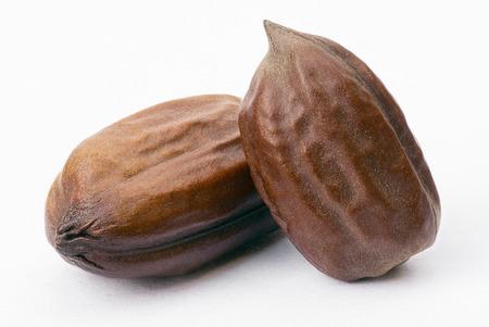 chinensis: Jojoba seeds (Simmondsia chinensis) isolated on withe beckground Stock Photo