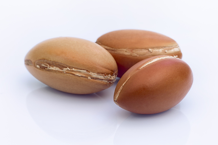 argan: Argan fruit (Argania spinosa), nuts on white background , this original seed of Morocco is used in cosmetics Stock Photo