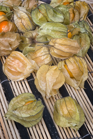 edible plant: Physalis fruit (Physalis peruviana) also called Cape gooseberry, Uchuva or gold berries. Plant with edible fruit native of Perù. Stock Photo