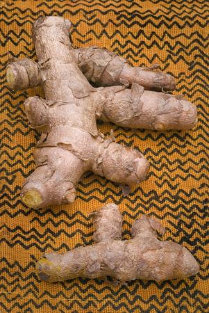 raices de plantas: La cúrcuma (Curcuma longa) es una raíz de la planta tropical en la misma familia que el jengibre, originaria de la India, y se cultiva en las regiones tropicales de todo el mundo. La sal de un intenso color amarillo es un ingrediente esencial en muchas recetas cocinan oriental