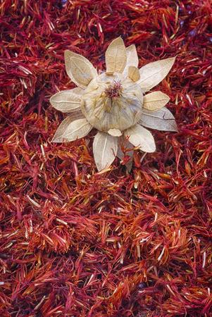 Safflower, false saffron (Carthamus tinctorius). dried flowers Stock fotó